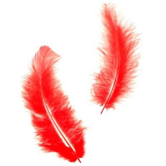 Pena para Decoração e Artesanato Vermelho - 12 Un