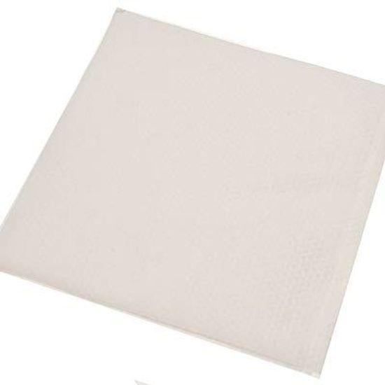 Guardanapo Color Grande Branco - 50 Un