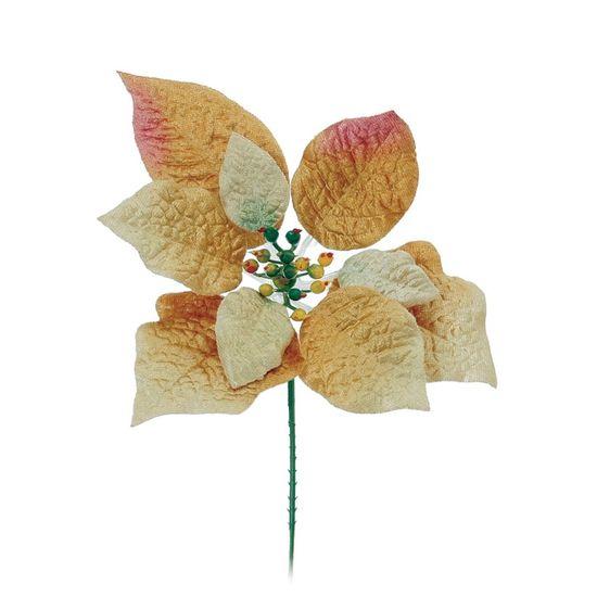 Poinsettia Ouro (Flores Cabo Curto)  - 12 Unidades