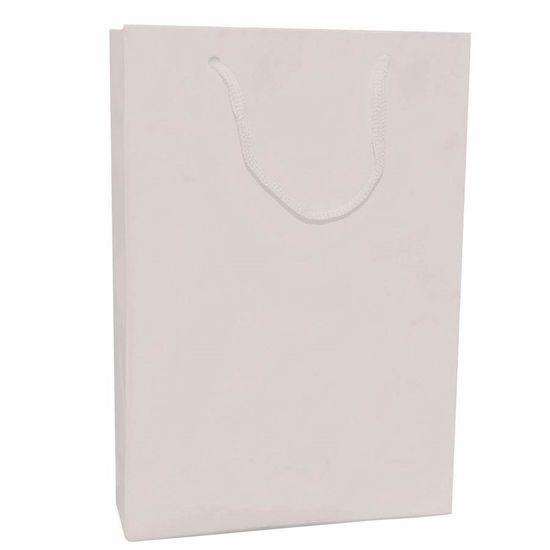 Sacola Cartonada 21.5x15cm Liso Branco - 10 unidades