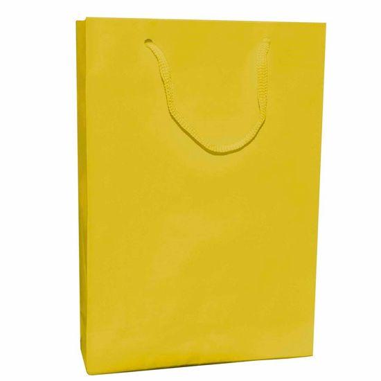 Sacola Cartonada 21.5x15cm Liso Amarelo - 10 unidades