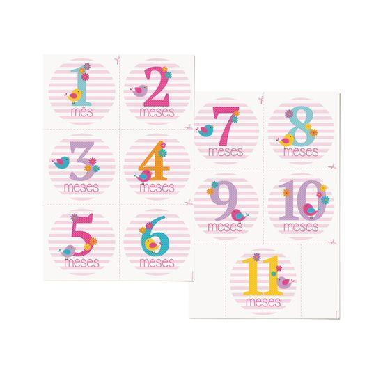 Cartela Transfer para Camisetas Mês de Aniversário Menina - 1 Unidade