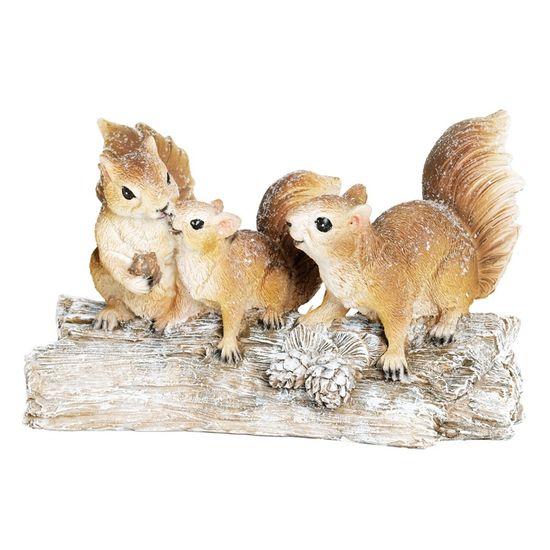 Esquilo Família Nó Tronco Marrom