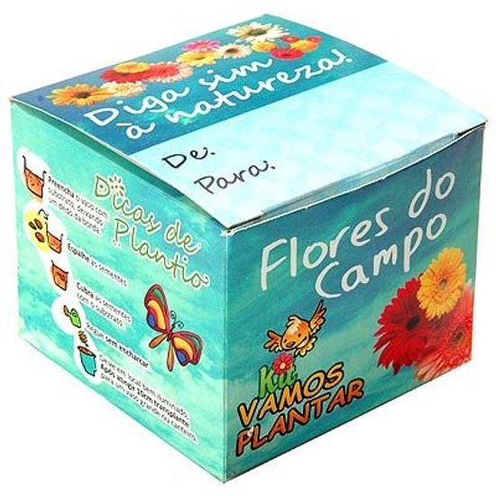 Kit Ecológico Vamos Plantar - Flores do Campo